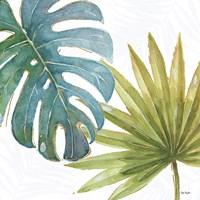 Tropical Blush VIII Fine-Art Print