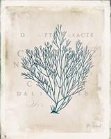 Sea Garden II Fine-Art Print