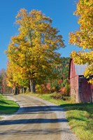Road beside Classic Farm in Autumn, New Hampshire Fine-Art Print
