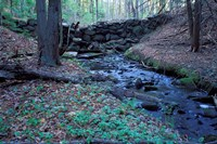 Banks of Lamprey River, National Wild and Scenic River, New Hampshire Fine-Art Print
