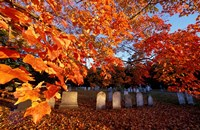 Fall Morning in a Portsmouth Cemetary, New Hampshire Fine-Art Print