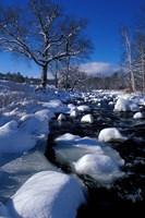 Wildcat River, New Hampshire Fine-Art Print