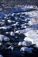 Wildcat River, White Mountains, New Hampshire Fine-Art Print