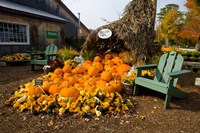 Gourds at the Moulton Farm farmstand in Meredith, New Hampshire Fine-Art Print