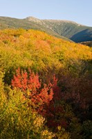 Mount Lafayette in fall, White Mountain National Forest, New Hampshire Fine-Art Print