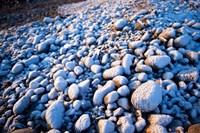 Winter cobblestones, Odiorne, New Hampshire Fine-Art Print
