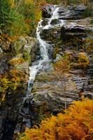 Autumn at Silver Cascade, Crawford Notch SP, New Hampshire Fine-Art Print