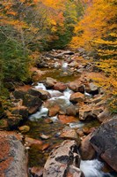 Liberty Gorge, Franconia Notch State Park, New Hampshire Fine-Art Print