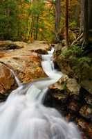 Pemigewasset River in Franconia Notch State Park, New Hampshire Fine-Art Print
