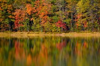Reflected autumn colors at Echo Lake State Park, New Hampshire Fine-Art Print