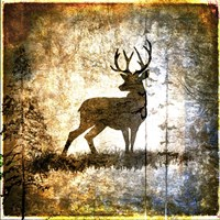 High Country Deer Fine-Art Print