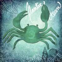 Alantic Ocean Crab Fine-Art Print