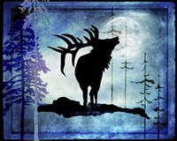 Midnight Elk Fine-Art Print