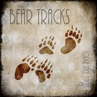 Moose Lodge 2 - Bear Tracks Fine-Art Print