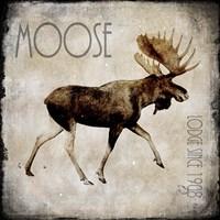 Moose Lodge 2 Fine-Art Print