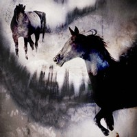 Black Mare - Dream 1 Fine-Art Print