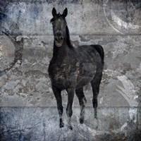 Black Mare 3 Fine-Art Print