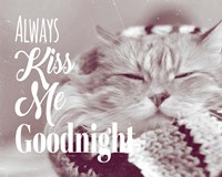 Always Kiss Me Goodnight Sleepy Cat Fine-Art Print