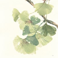 Gingko Leaves II Light Fine-Art Print