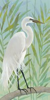 Egret by the Shore I Fine-Art Print