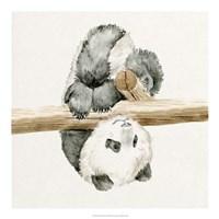 Baby Panda II Fine-Art Print