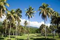 Golf course, Taveuni Estates, Fiji Fine-Art Print