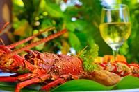Cuisine, Lobster, Fiji Fine-Art Print