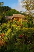 Lush Gardens, Matangi Private Island Resort, Fiji Fine-Art Print