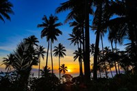 Sunset and Palms, Taveuni, Fiji Fine-Art Print