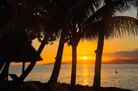 Sunset through Palms, Taveuni, Vanua Levu in Background, Fiji Fine-Art Print