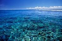 Fiji Islands, Tavarua, coral reef Fine-Art Print