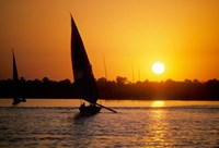 Silhouette of a traditional Egyptian Falucca, Nile River, Luxor, Egypt Fine-Art Print