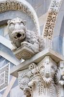 Gargoyle of Duomo Pisa, Pisa, Italy Fine-Art Print