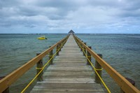 Long wooden pier, Coral Coast, Fiji, South Pacific Fine-Art Print
