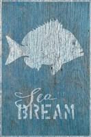 Sea Bream Fine-Art Print
