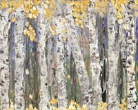 Yellow Leaf Birch Trees Fine-Art Print