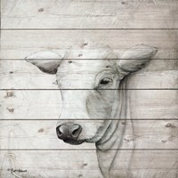 January Cow II Fine-Art Print