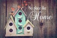 No Place Like Home Bird Houses Fine-Art Print