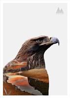 Eagle Fine-Art Print