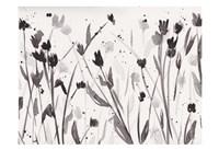 Noir Meadow Fine-Art Print
