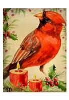 Christmas Cardinal Fine-Art Print