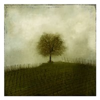 Top of the Hill Fine-Art Print