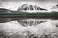 Waterfowl Lake I BW with Color Fine-Art Print