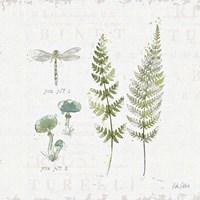 In the Forest VI Fine-Art Print