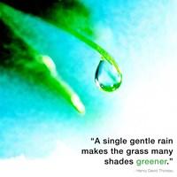 A Single Gentle Rain - Henry Thoreau Quote (Droplet) Fine-Art Print