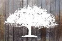 White Tree on Wood Fine-Art Print