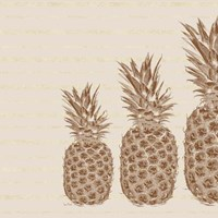 Pineapples - Right Three Framed Print