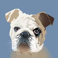 Dog in Blue Fine-Art Print