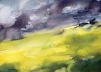 Green Grass Fine-Art Print