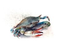 Crab II Fine-Art Print